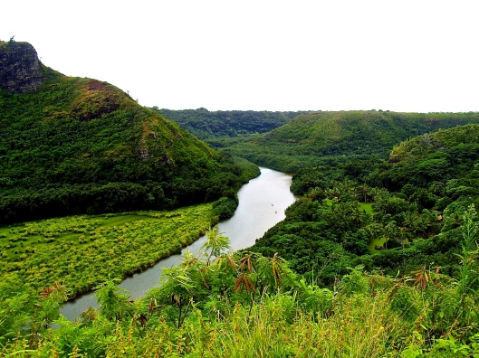 Abundant Valley