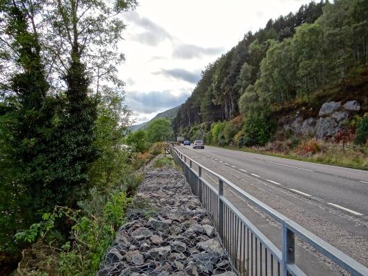 Loch Ness Roadside