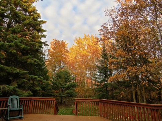 A crisp autumn day on the deck