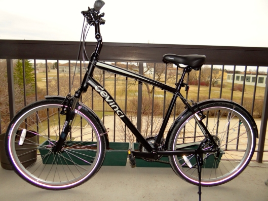 This is Leanordo, or Lenny for short. My new bicycle.
